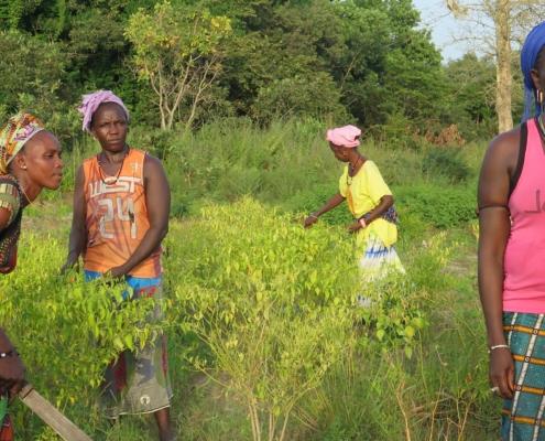 mujeres, pobreza, senegal