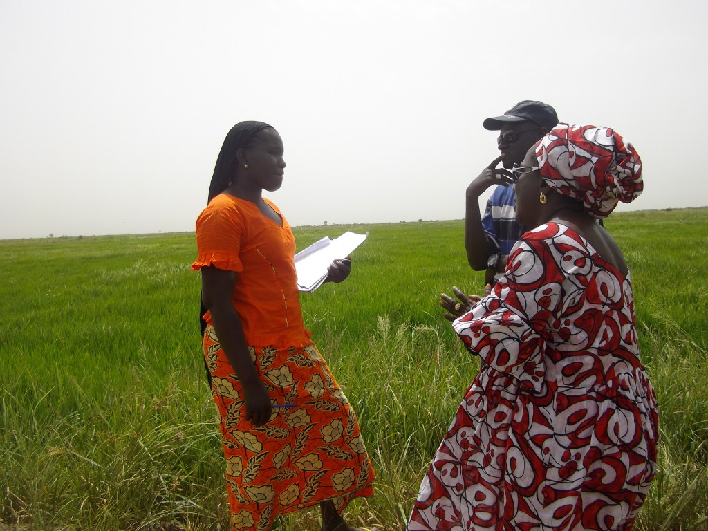 alianzaporlasolidaridad_desarrollolocal_senegal_tierras