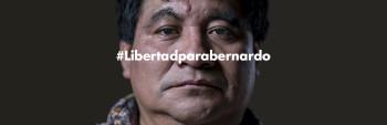 MarqueBernardo