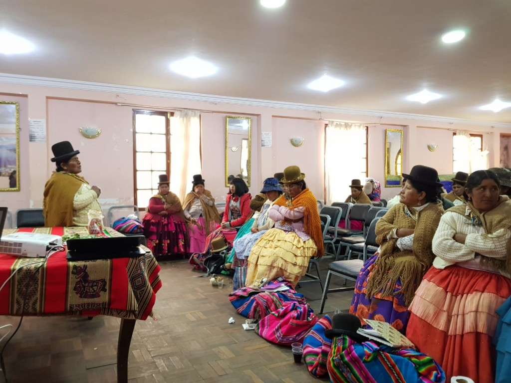 Mujeres de Pucarani